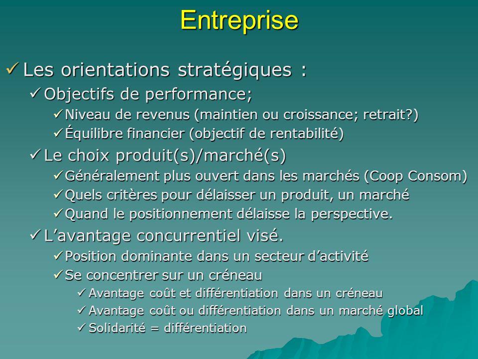 Entreprise Les orientations stratégiques : Objectifs de performance;