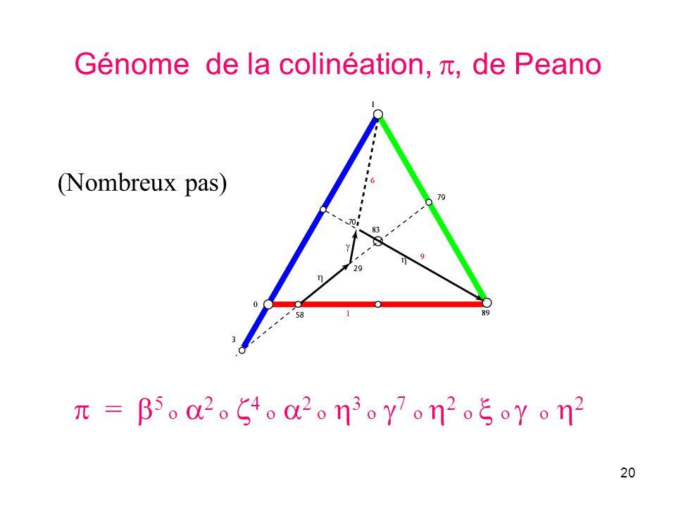 Génome de la colinéation, , de Peano