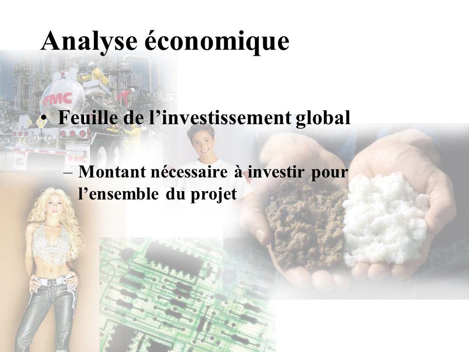 Analyse économique Feuille de l'investissement global