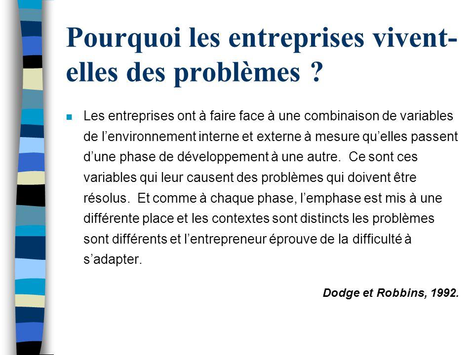 Pourquoi les entreprises vivent-elles des problèmes