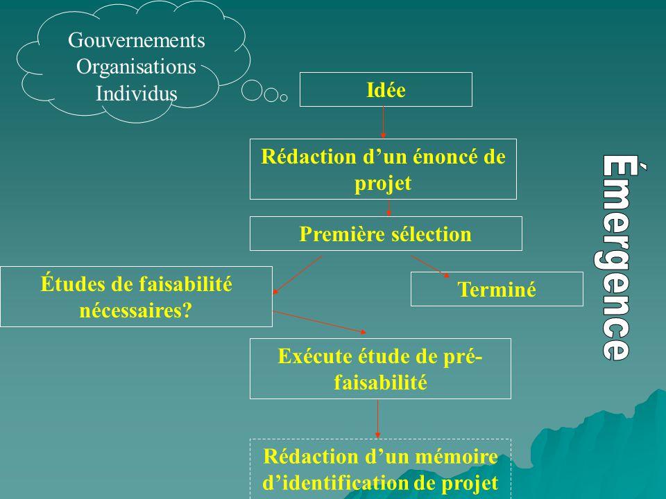 Émergence Gouvernements Organisations Individus Idée
