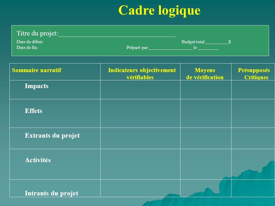Cadre logique Titre du projet:__________________________________