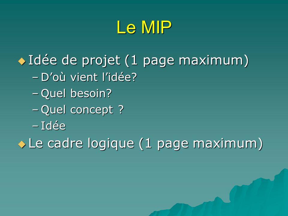 Le MIP Idée de projet (1 page maximum)