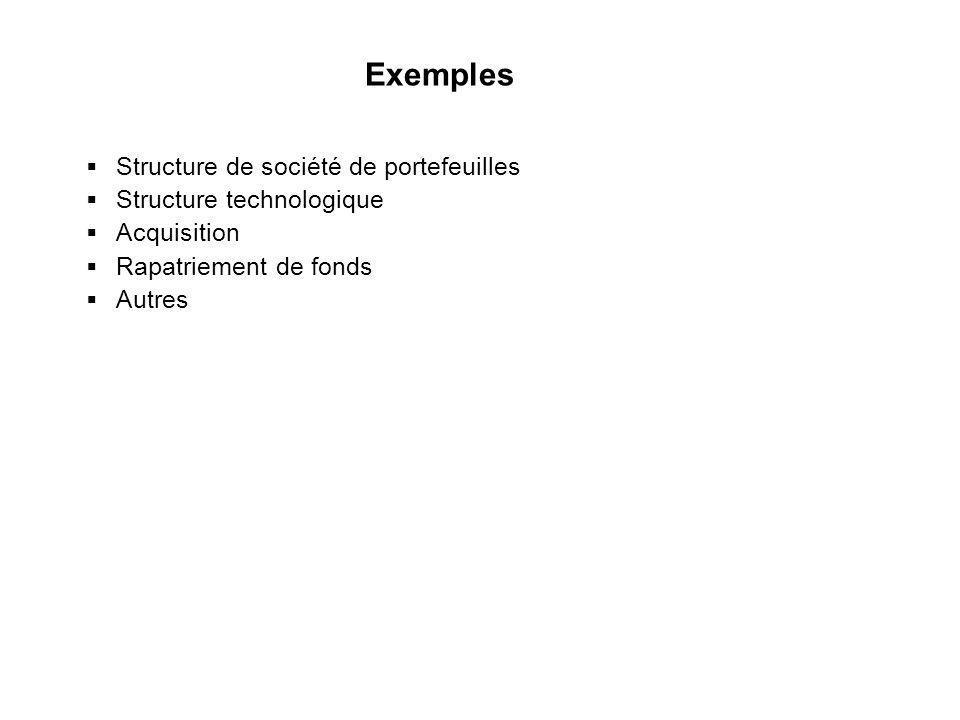 Exemples Structure de société de portefeuilles Structure technologique