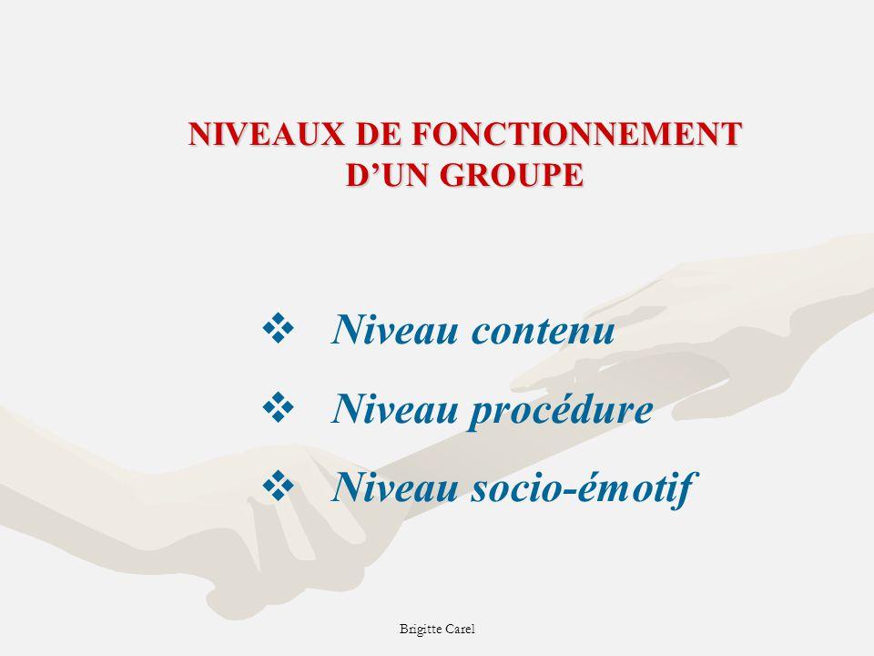 NIVEAUX DE FONCTIONNEMENT D'UN GROUPE