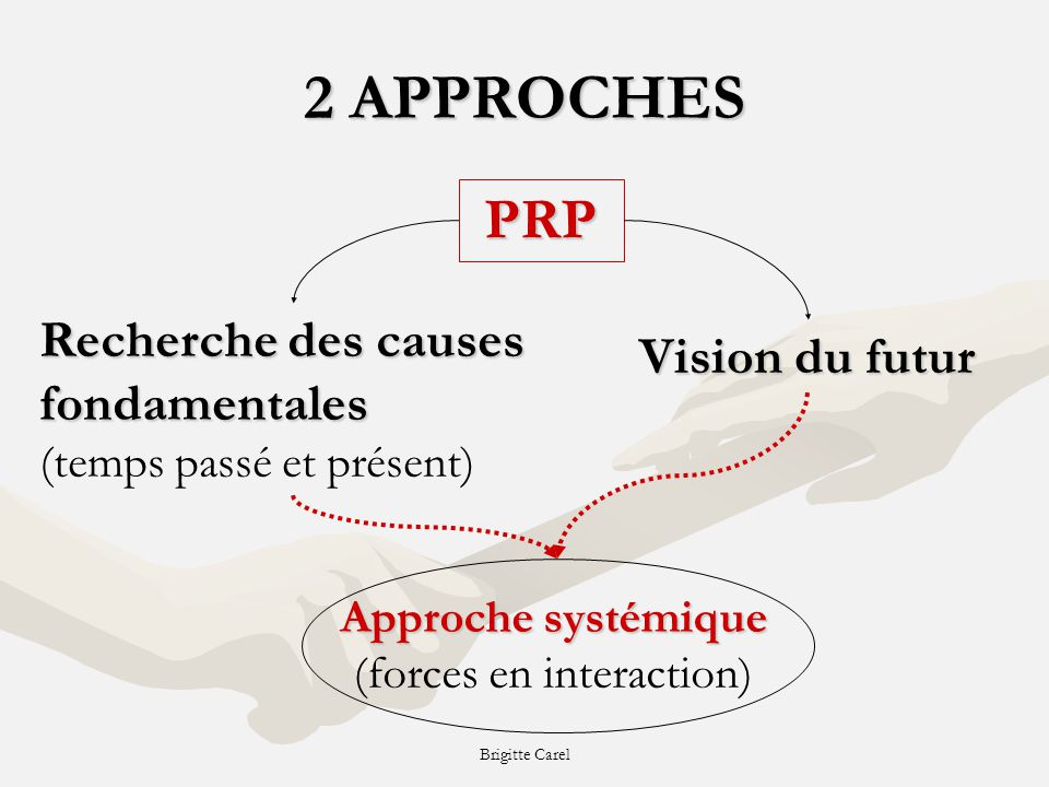 Approche systémique (forces en interaction)