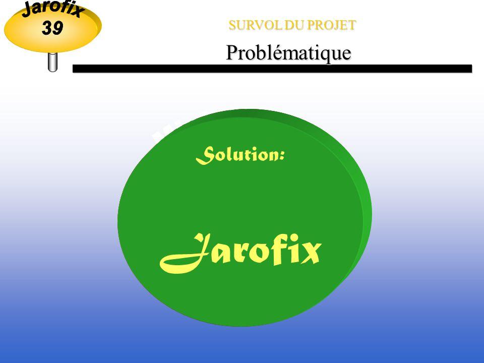 Jarofix Ministère de l environnement Problématique Solution: