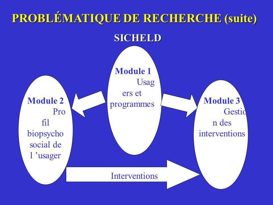 PROBLÉMATIQUE DE RECHERCHE (suite)