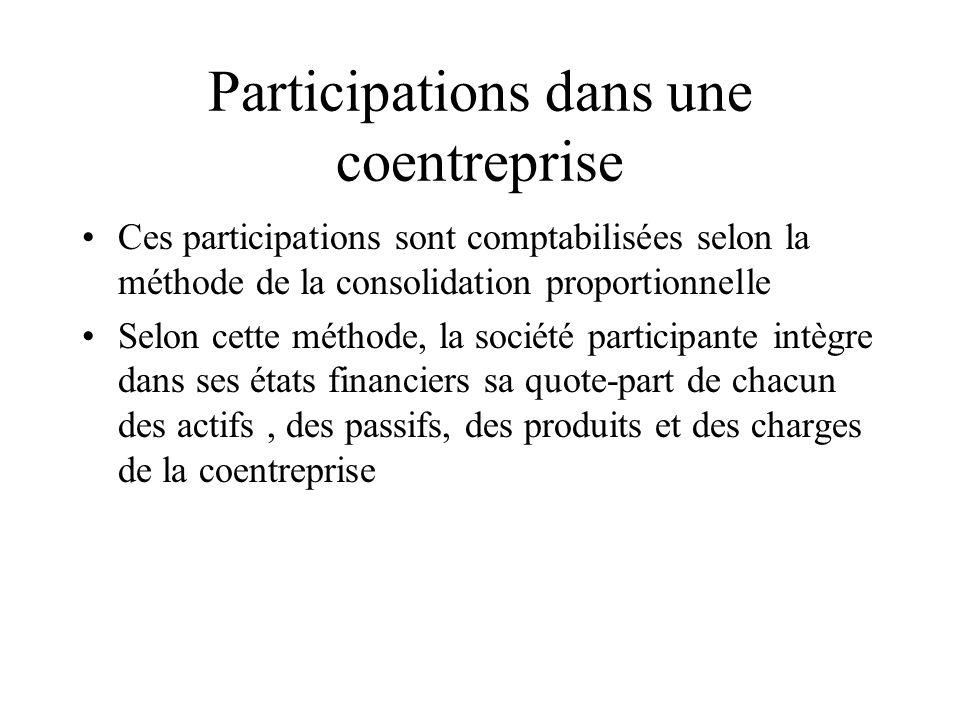 Participations dans une coentreprise