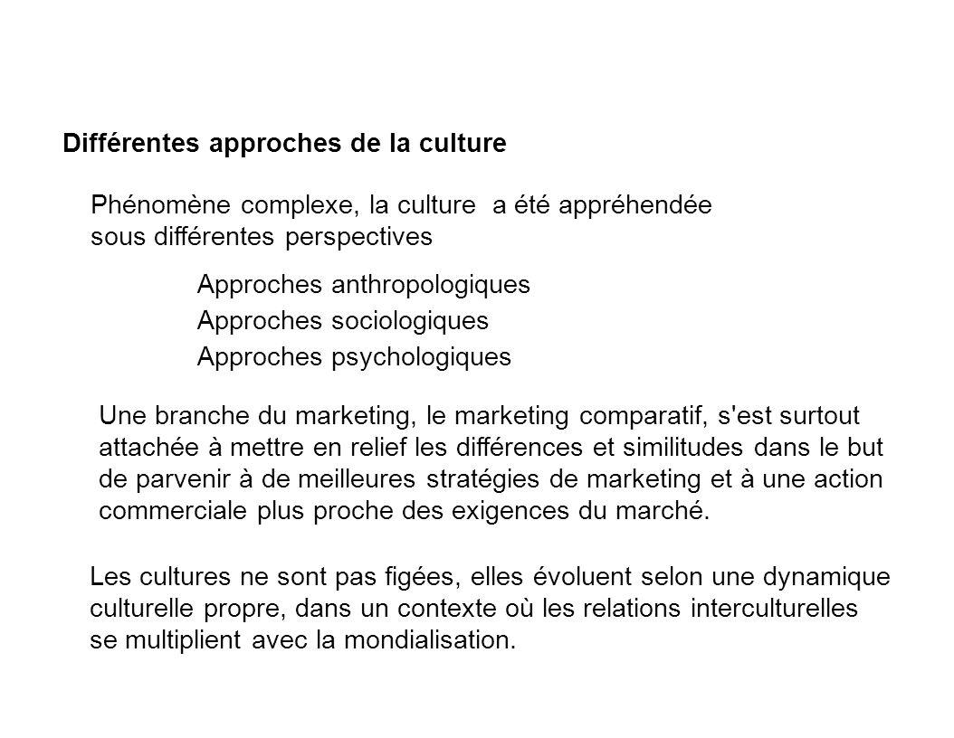 Différentes approches de la culture