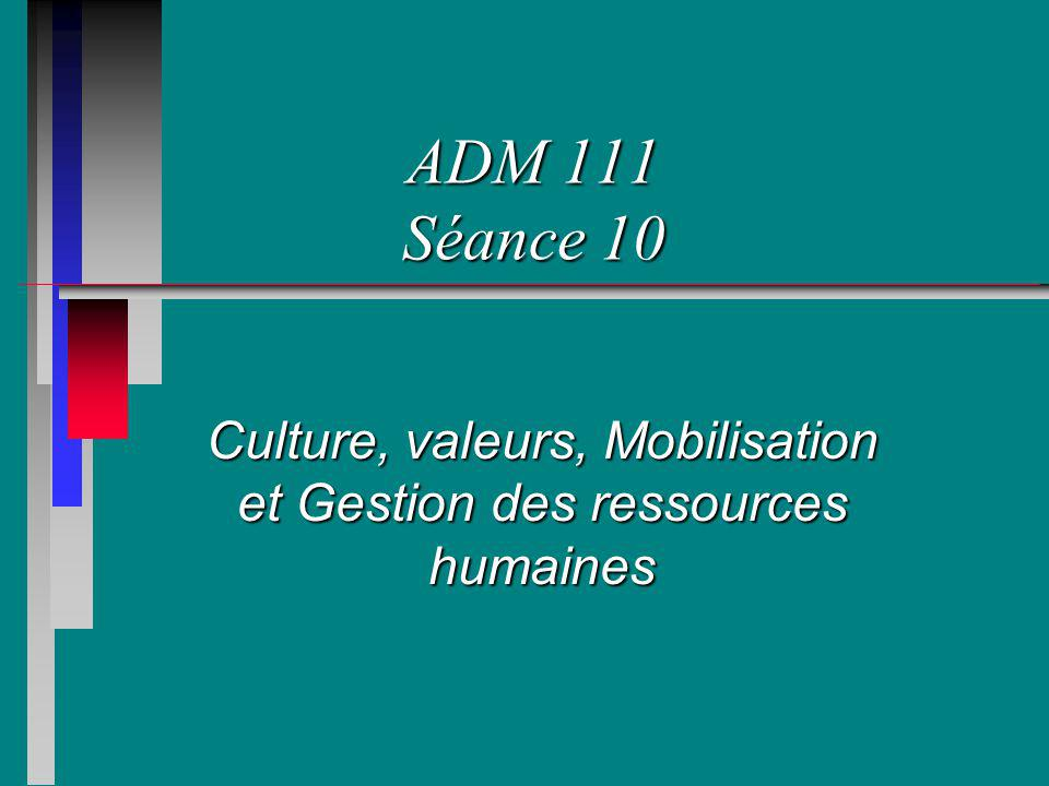 Culture, valeurs, Mobilisation et Gestion des ressources humaines