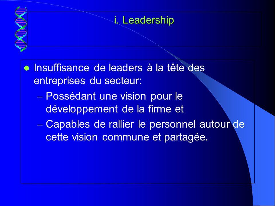 i. Leadership Insuffisance de leaders à la tête des entreprises du secteur: Possédant une vision pour le développement de la firme et.