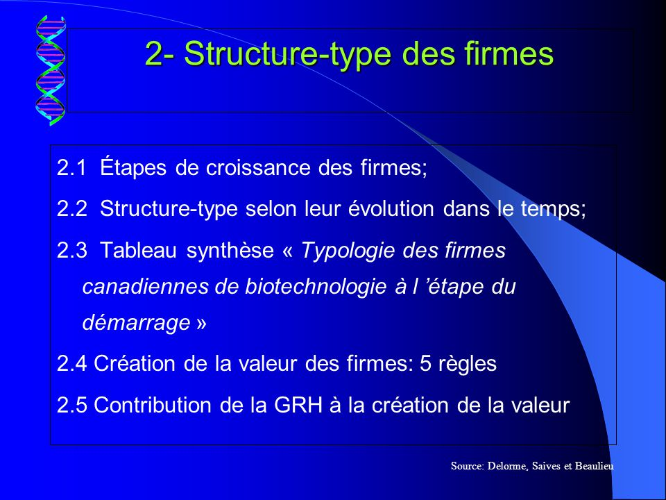 2- Structure-type des firmes