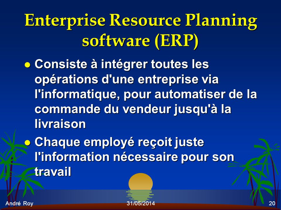 Enterprise Resource Planning software (ERP)
