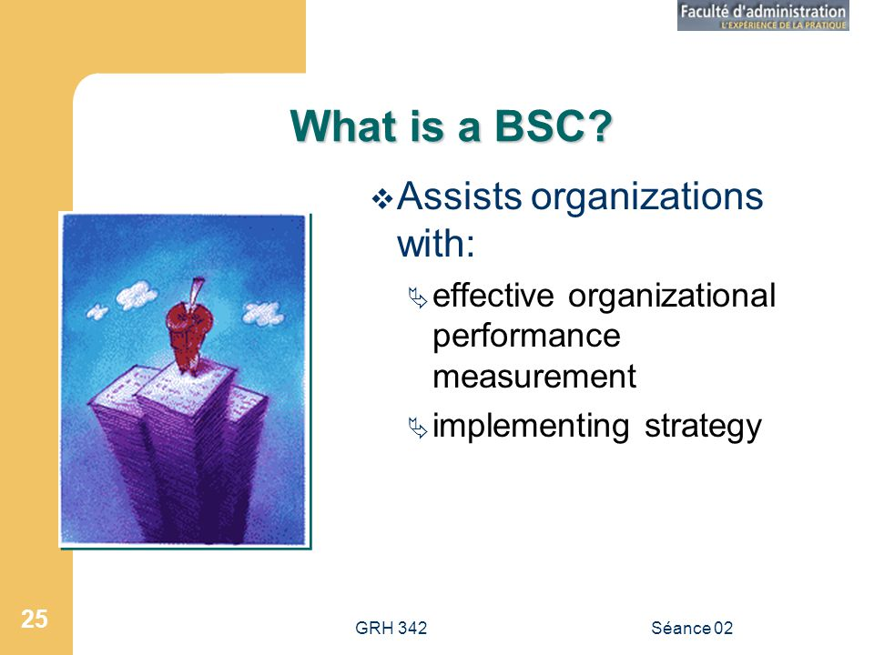 What is a BSC Assists organizations with: