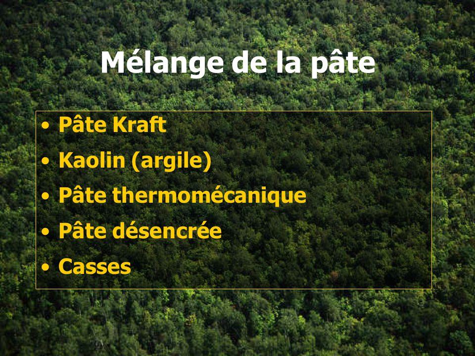 Mélange de la pâte Pâte Kraft Kaolin (argile) Pâte thermomécanique