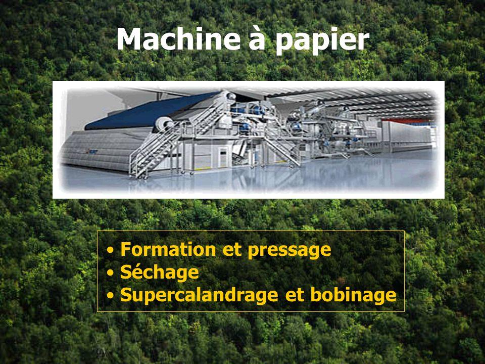 Machine à papier Formation et pressage Séchage