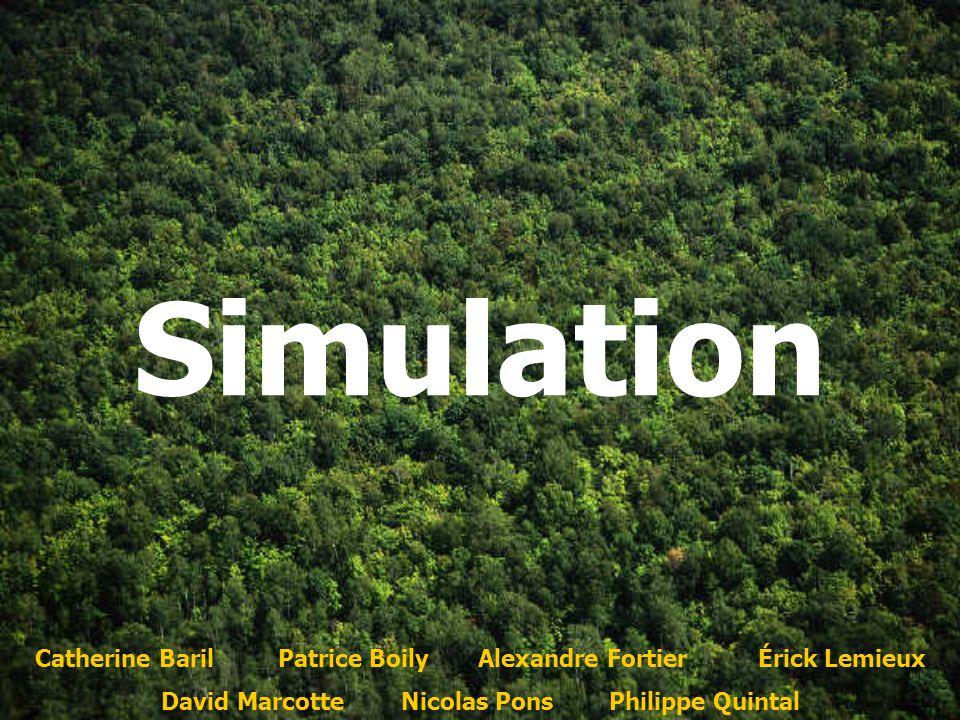 Simulation Catherine Baril Patrice Boily Alexandre Fortier Érick Lemieux.