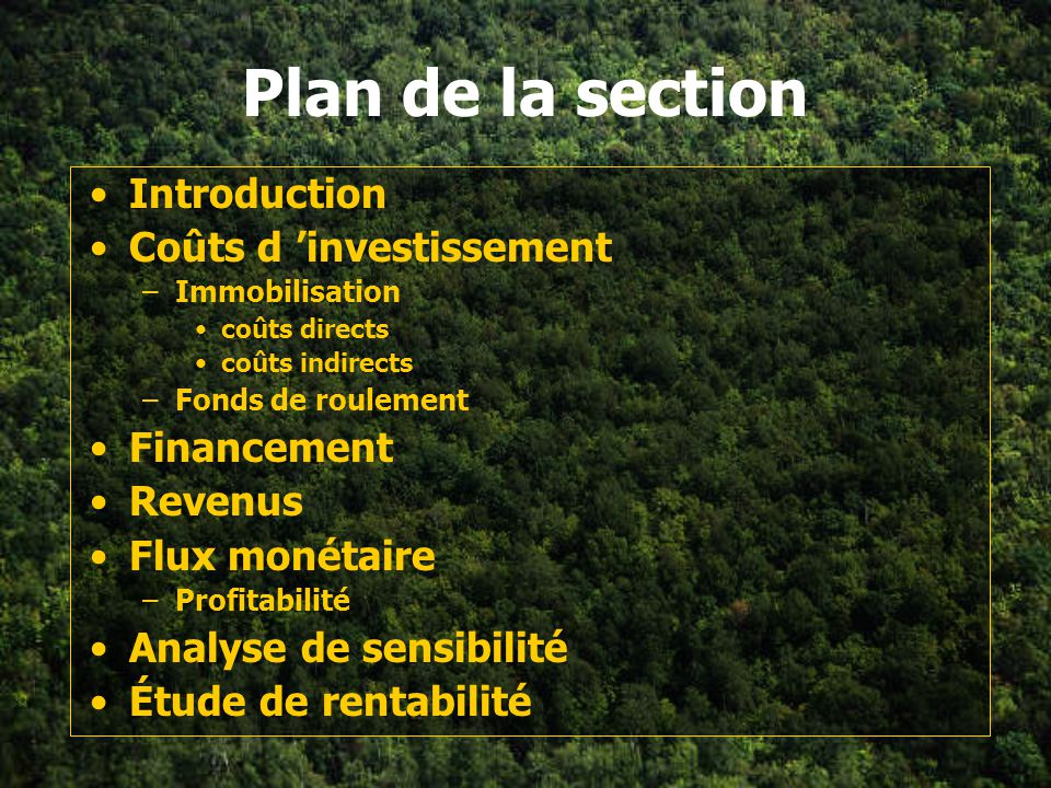 Plan de la section Introduction Coûts d 'investissement Financement