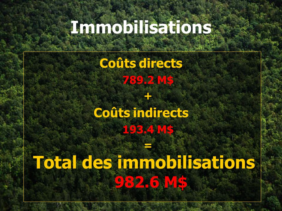 Total des immobilisations