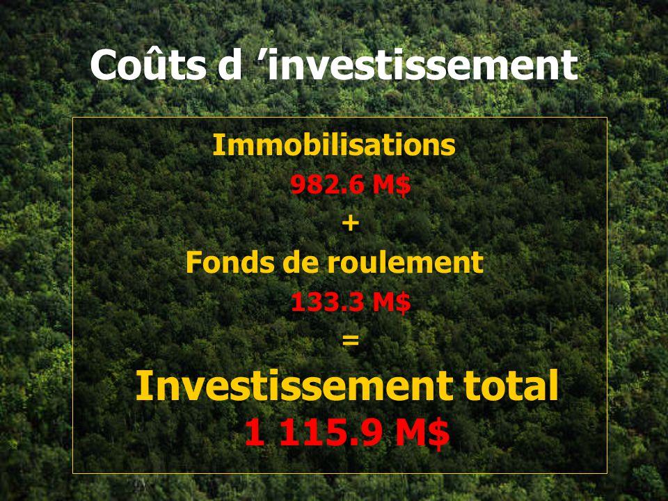Coûts d 'investissement