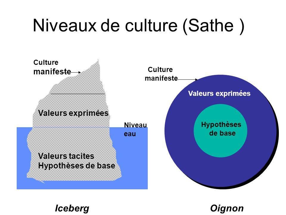 Niveaux de culture (Sathe )