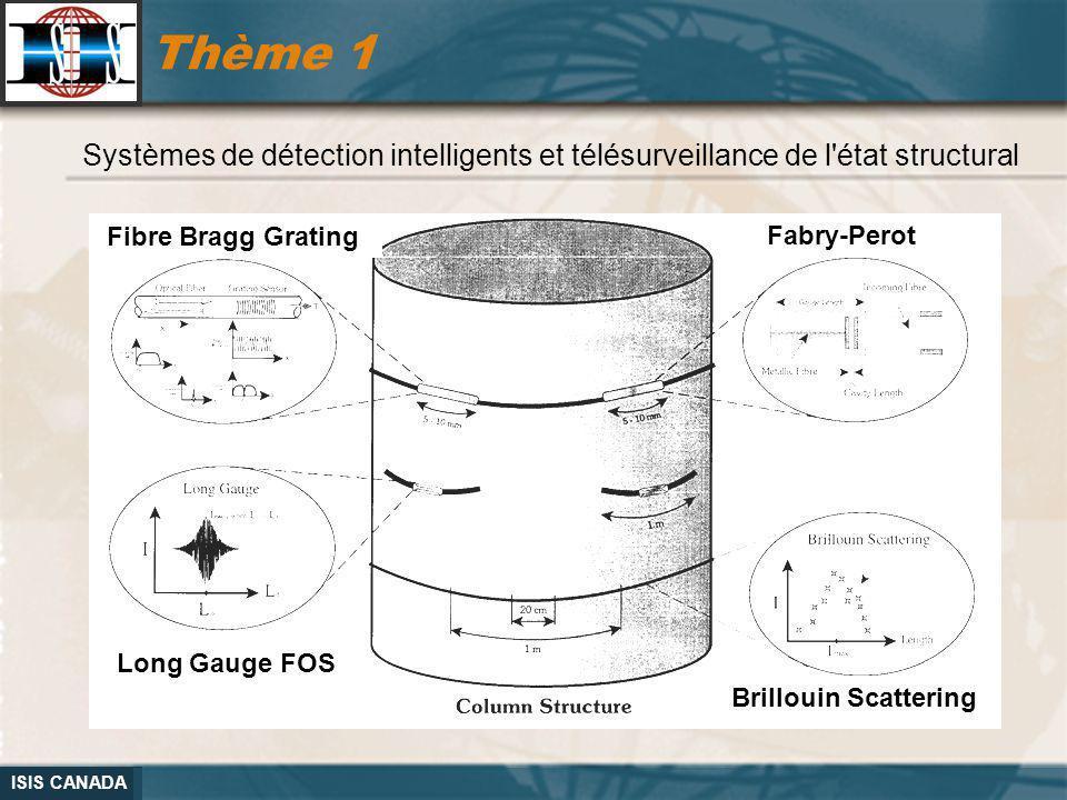 Thème 1 Systèmes de détection intelligents et télésurveillance de l état structural. Fibre Bragg Grating.