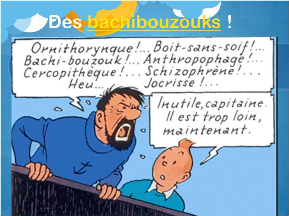 Des bachibouzouks !