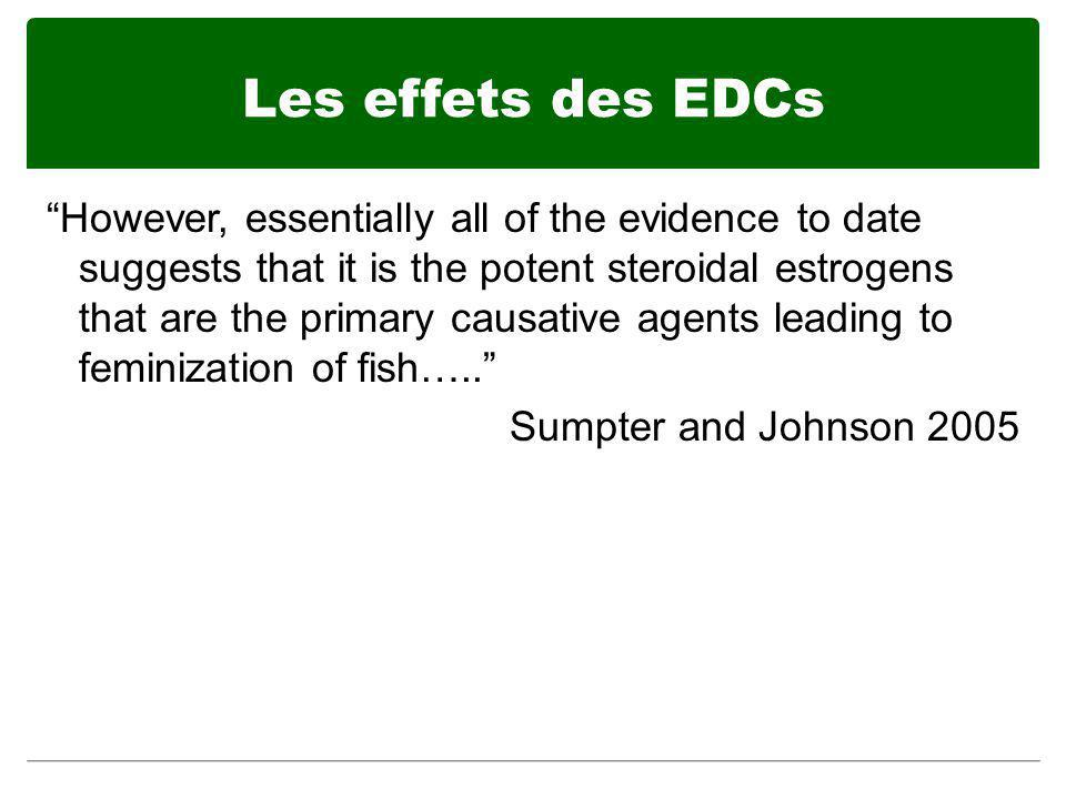 Les effets des EDCs