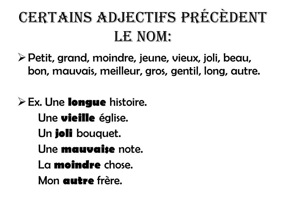 Certains adjectifs précèdent le nom: