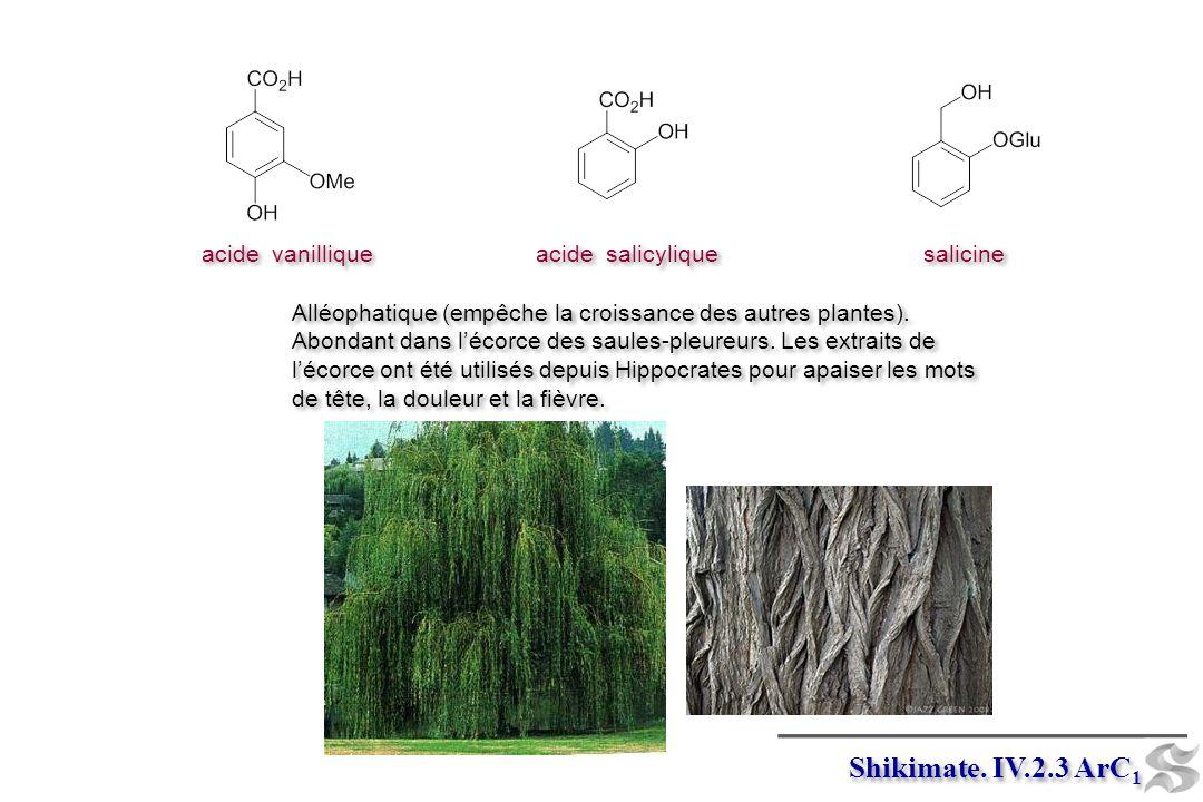 Shikimate. IV.2.3 ArC1 acide vanillique acide salicylique salicine