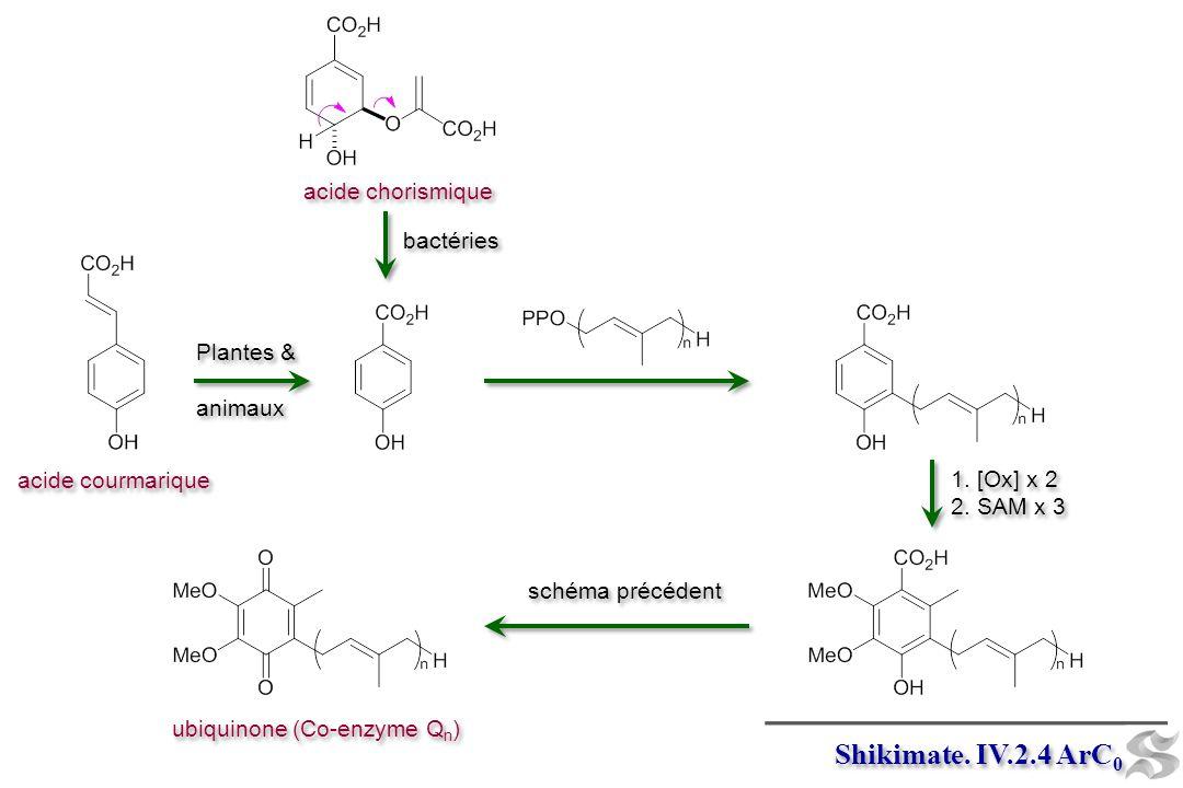 Shikimate. IV.2.4 ArC0 acide chorismique bactéries Plantes & animaux