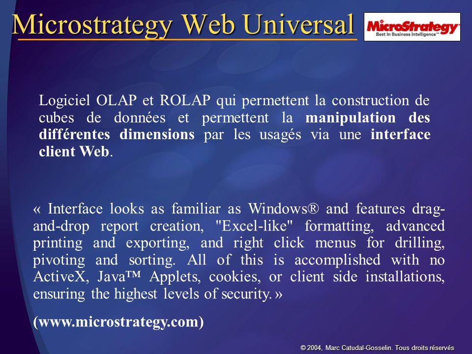 Microstrategy Web Universal
