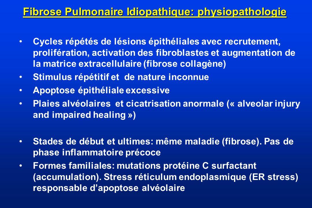 Fibrose Pulmonaire Idiopathique: physiopathologie