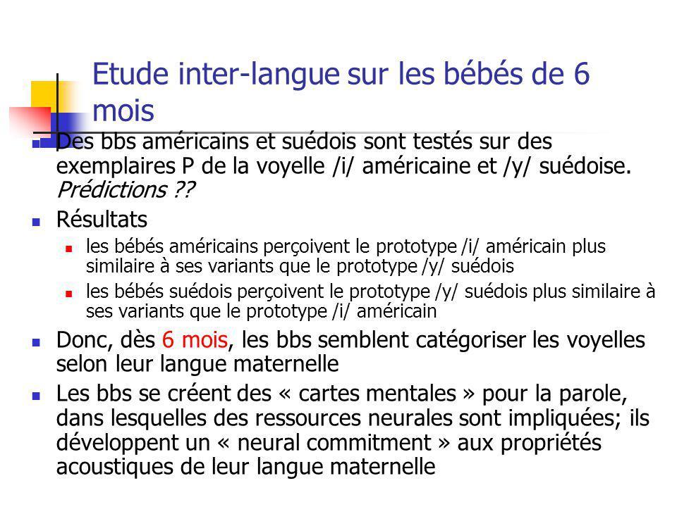 Etude inter-langue sur les bébés de 6 mois