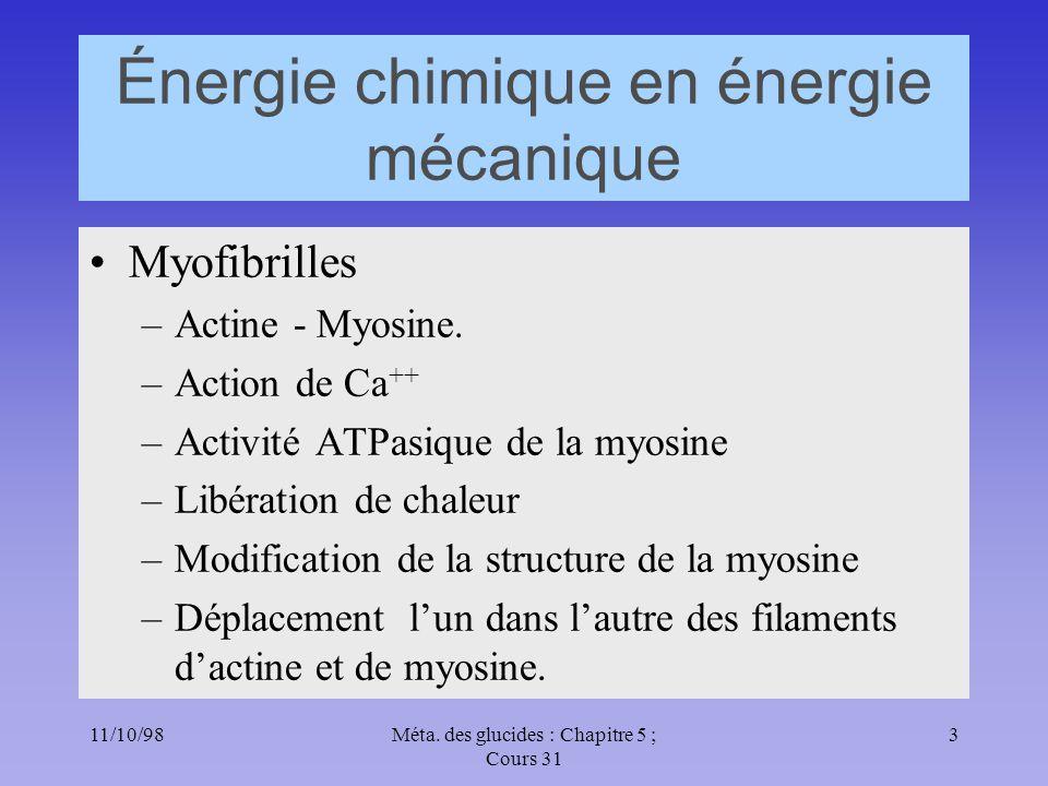 Énergie chimique en énergie mécanique