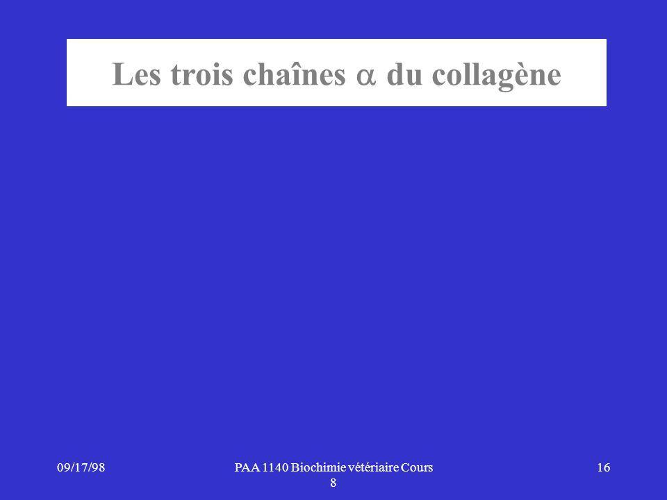 Les trois chaînes du collagène
