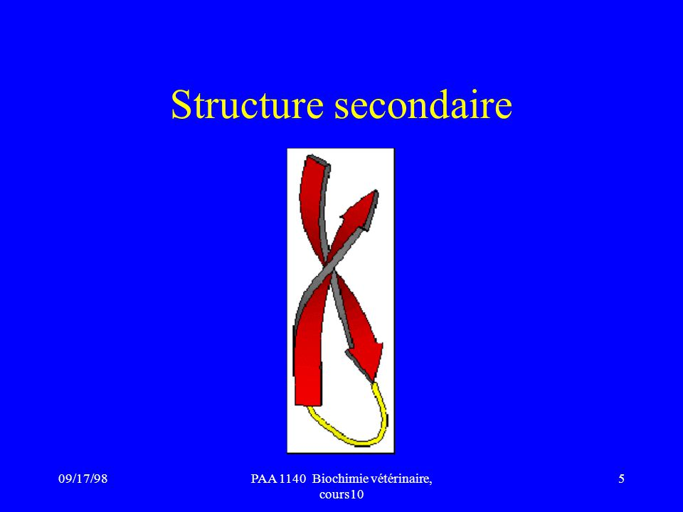 PAA 1140 Biochimie vétérinaire, cours10
