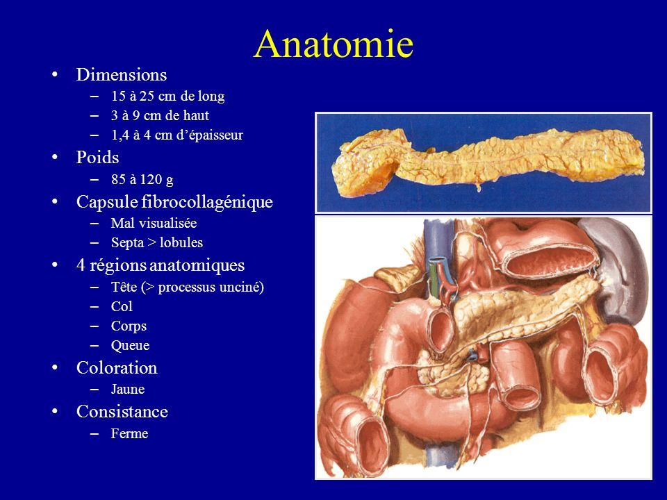 Anatomie Dimensions Poids Capsule fibrocollagénique