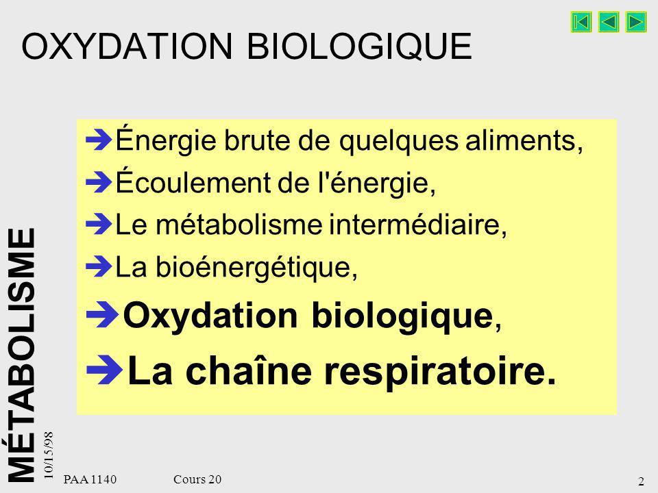 La chaîne respiratoire.