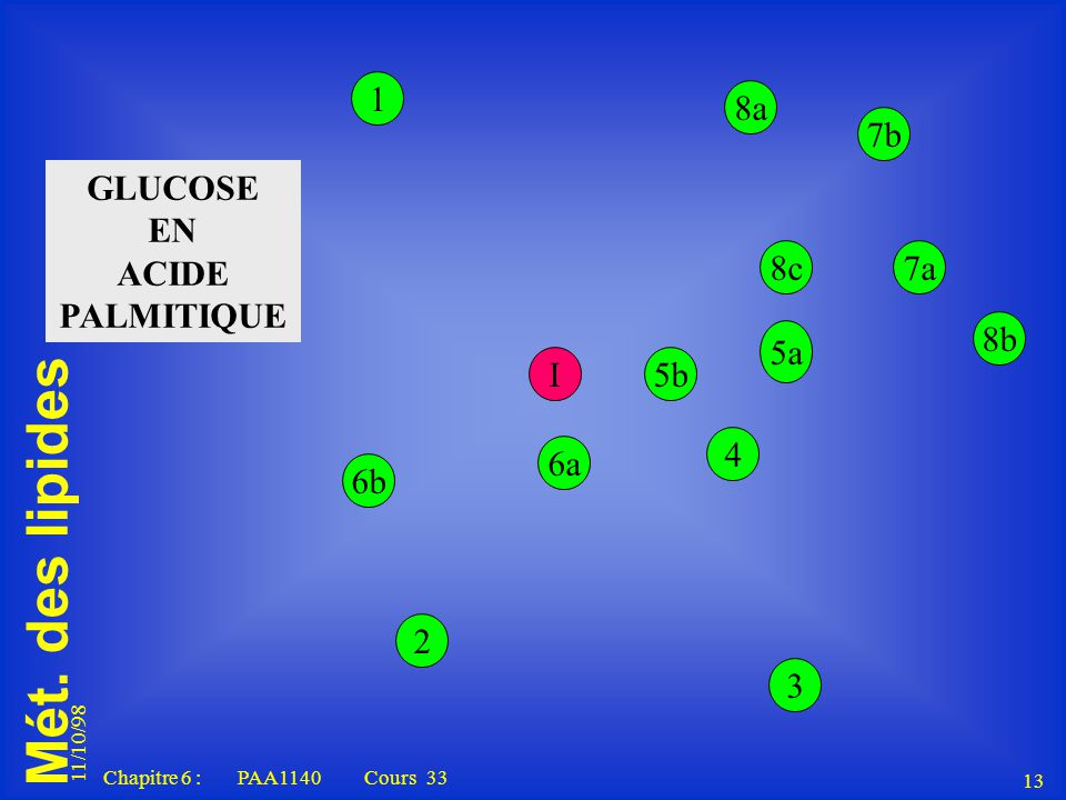 GLUCOSE EN ACIDE PALMITIQUE