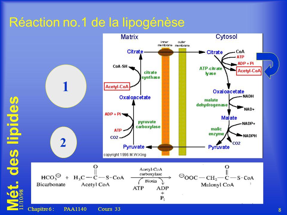 Réaction no.1 de la lipogénèse