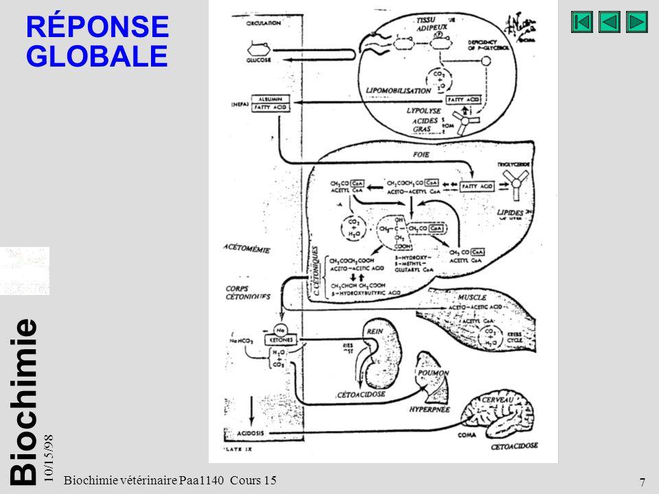 RÉPONSE GLOBALE 10/15/98 Biochimie vétérinaire Paa1140 Cours 15 7 7