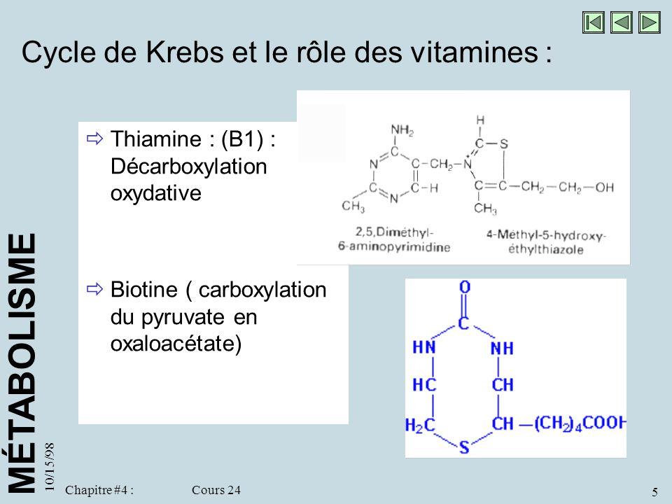 Cycle de Krebs et le rôle des vitamines :