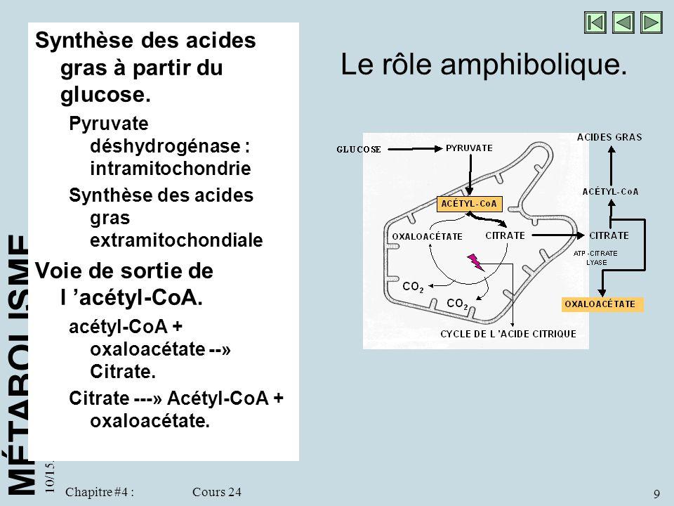 Le rôle amphibolique. Synthèse des acides gras à partir du glucose.