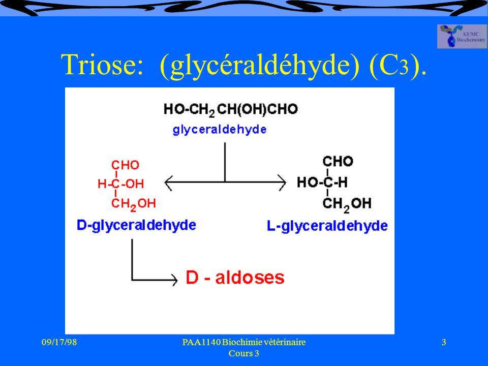 Triose: (glycéraldéhyde) (C3).
