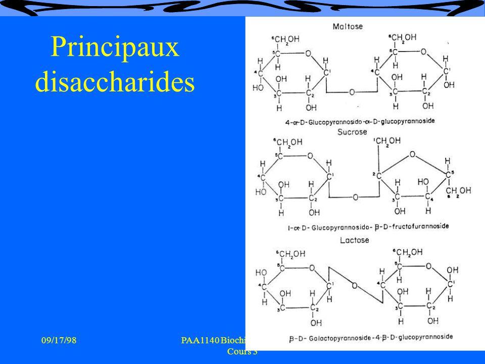 Principaux disaccharides