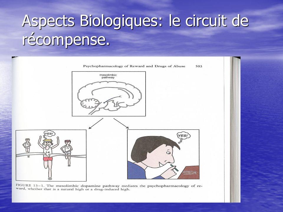 Aspects Biologiques: le circuit de récompense.