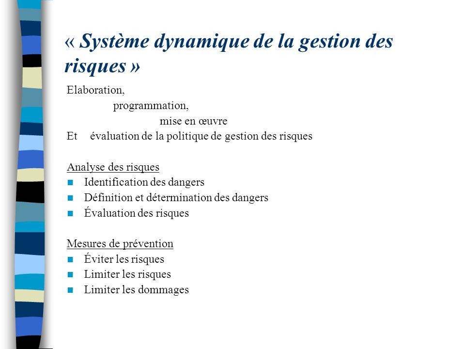 « Système dynamique de la gestion des risques »