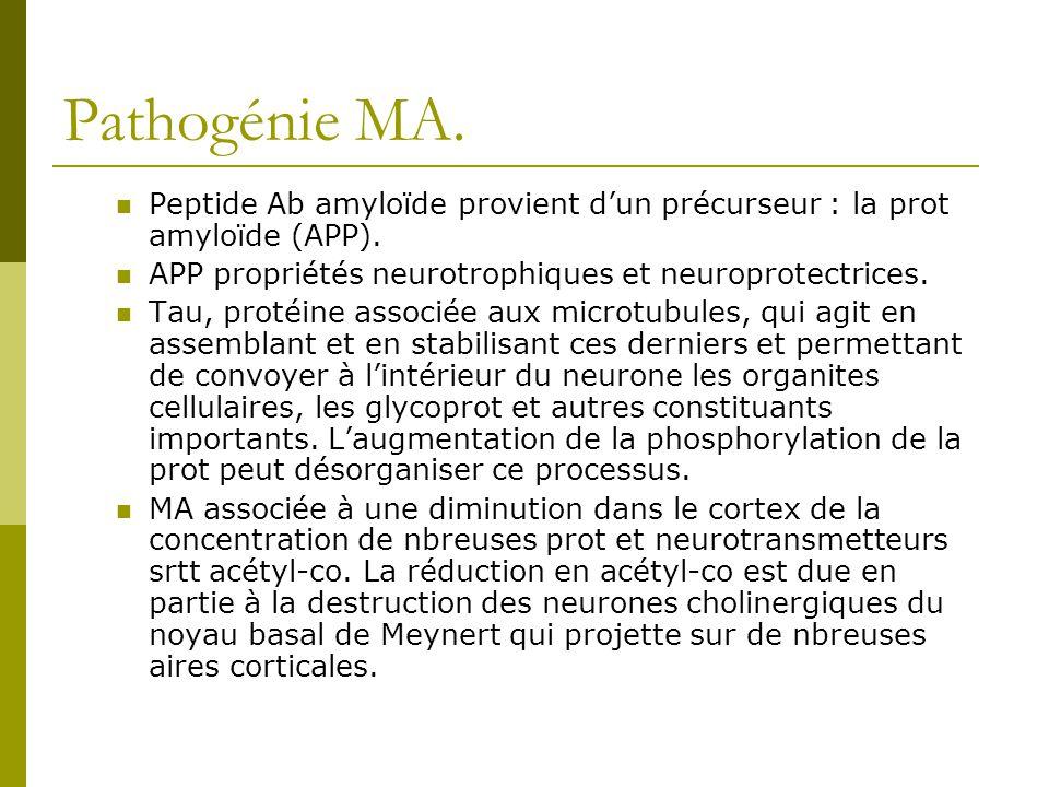 Pathogénie MA. Peptide Ab amyloïde provient d'un précurseur : la prot amyloïde (APP). APP propriétés neurotrophiques et neuroprotectrices.
